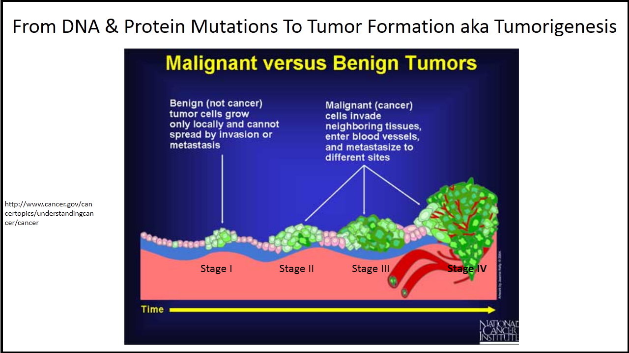 Malignant vs Benign Tumors