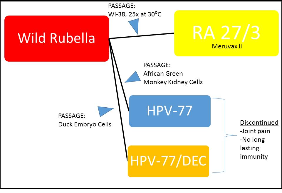Rubella attenuation